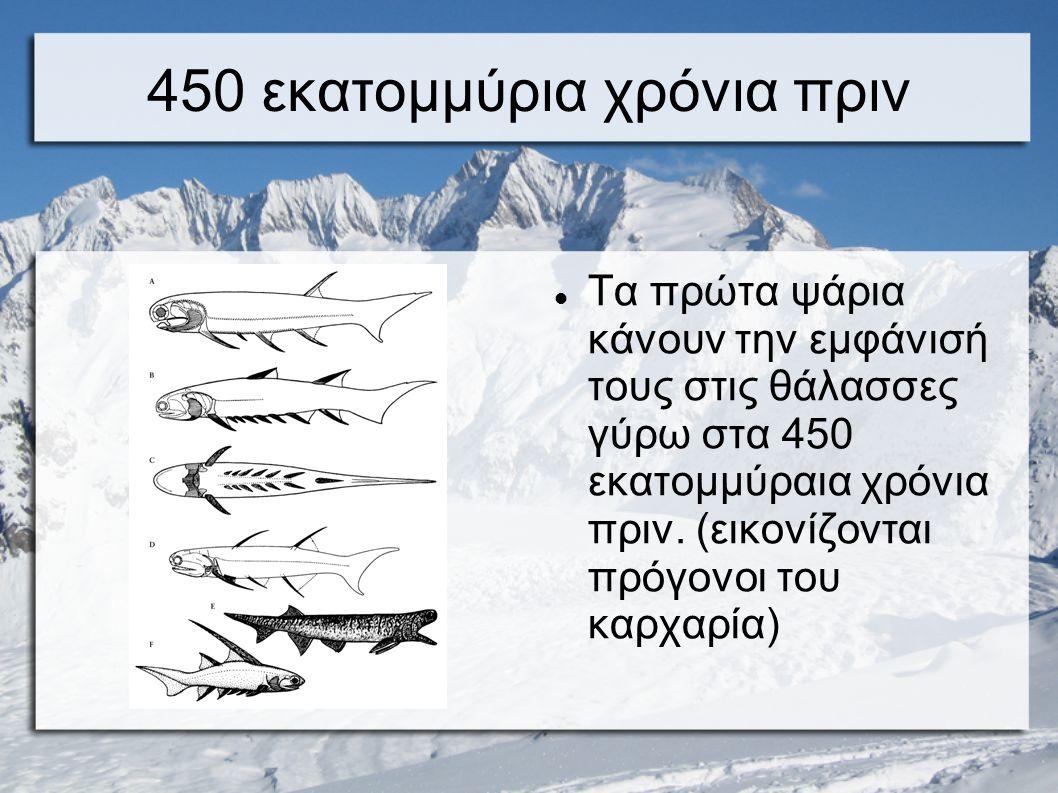 450 εκατομμύρια χρόνια πριν Τα πρώτα ψάρια κάνουν την εμφάνισή τους στις θάλασσες γύρω στα 450 εκατομμύραια χρόνια πριν. (εικονίζονται πρόγονοι του κα
