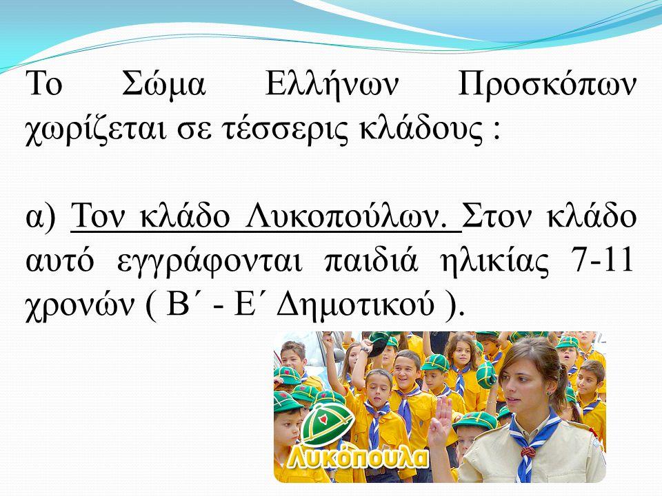 β) Τον κλάδο Προσκόπων.