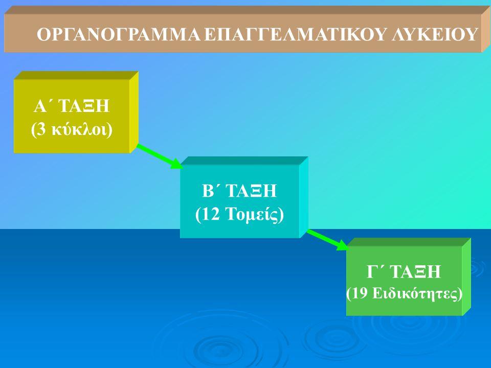Α΄ ΤΑΞΗ (3 κύκλοι) Γ΄ ΤΑΞΗ (19 Ειδικότητες) Β΄ ΤΑΞΗ (12 Τομείς) ΟΡΓΑΝΟΓΡΑΜΜΑ ΕΠΑΓΓΕΛΜΑΤΙΚΟΥ ΛΥΚΕΙΟΥ
