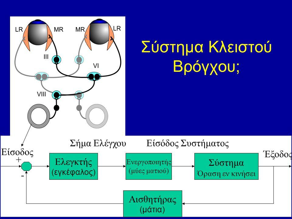 Σύστημα Κλειστού Βρόγχου; Σύστημα Όραση εν κινήσει Ελεγκτής (εγκέφαλος) Είσοδος Σήμα Ελέγχου Έξοδος Ενεργοποιητής (μύες ματιού) Είσόδος Συστήματος Αισθητήρας (μάτια) + -