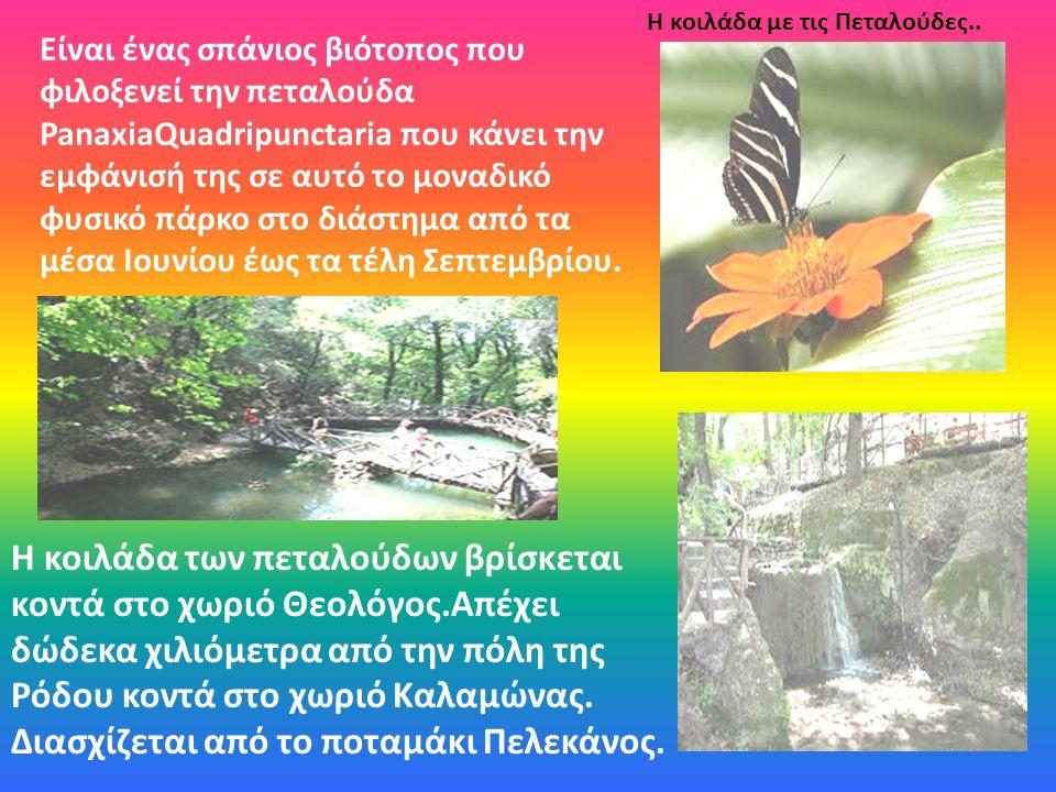 Είναι ένας σπάνιος βιότοπος που φιλοξενεί την πεταλούδα PanaxiaQuadripunctaria που κάνει την εμφάνισή της σε αυτό το μοναδικό φυσικό πάρκο στο διάστημ
