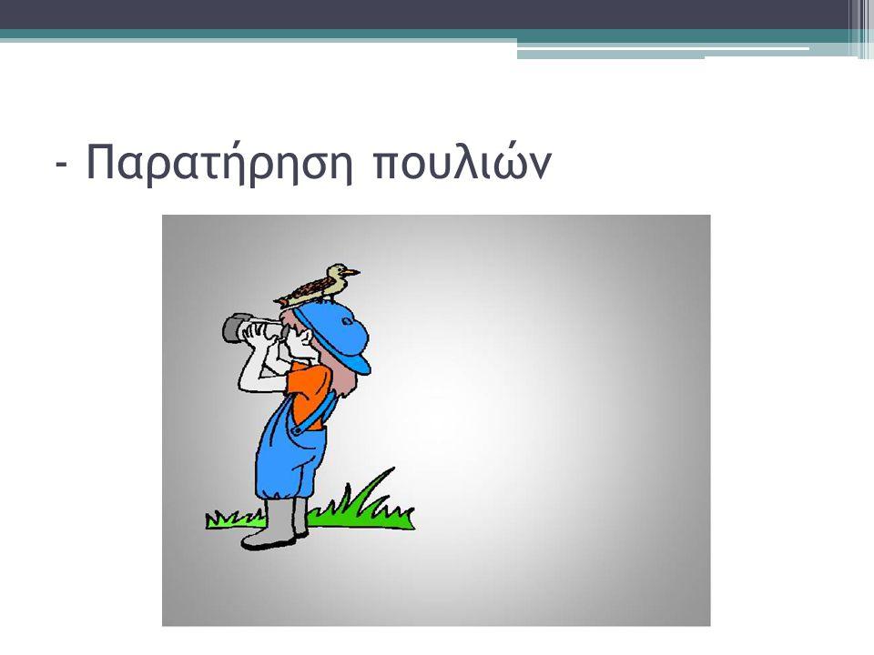 - Παρατήρηση πουλιών