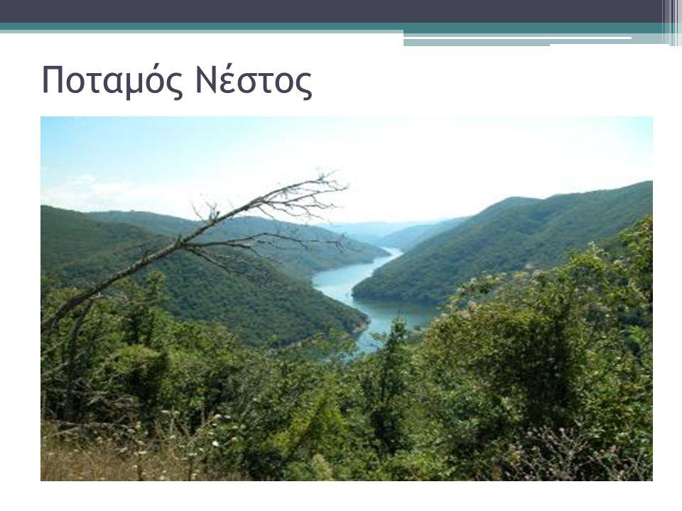 Ποταμός Νέστος