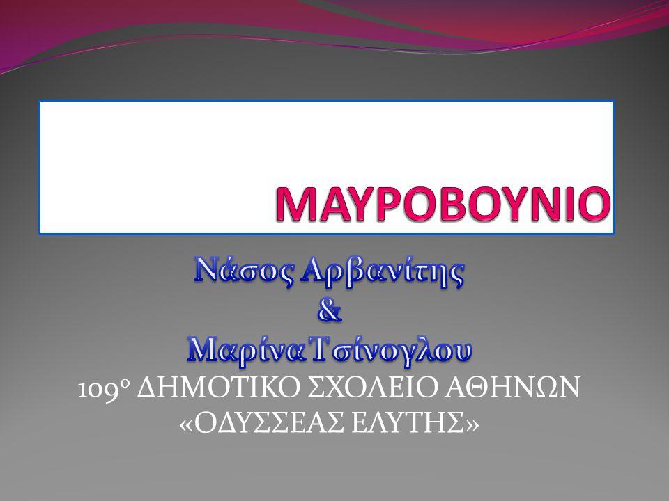 Ναοί Μαυροβουνίου
