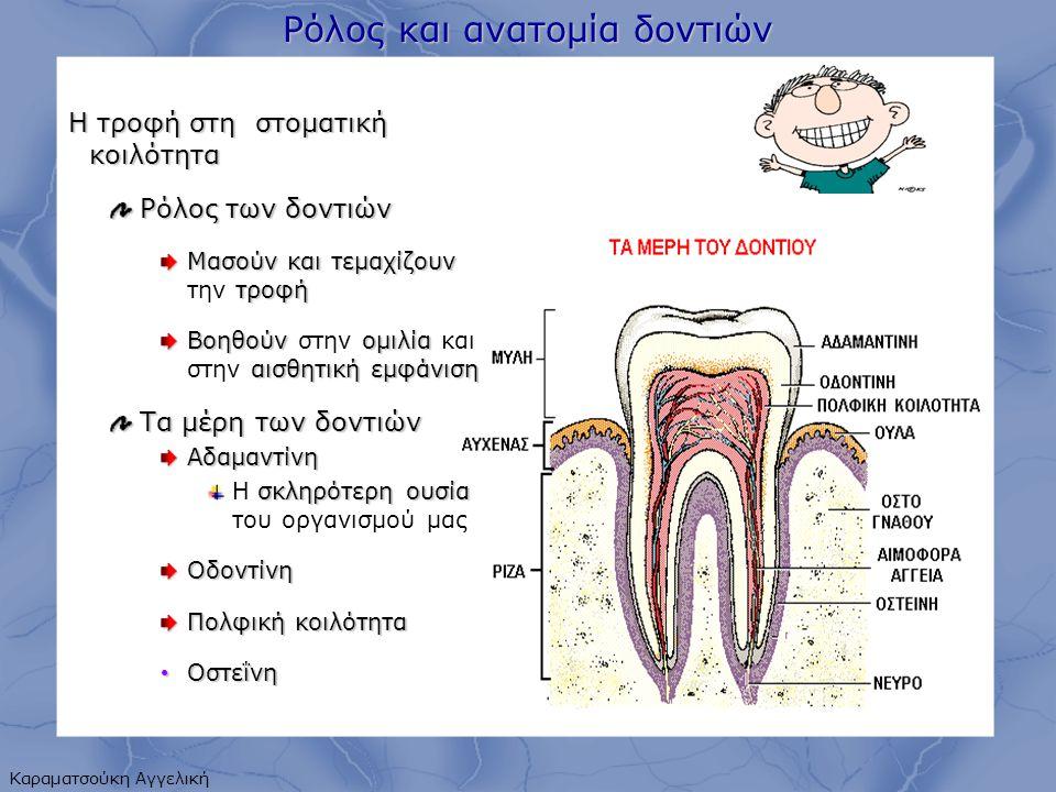 Ρόλος και ανατομία δοντιών Η τροφή στη στοματική κοιλότητα Ρόλος των δοντιών Μασούν και τεμαχίζουν τροφή Μασούν και τεμαχίζουν την τροφή Βοηθούν ομιλία αισθητική εμφάνιση Βοηθούν στην ομιλία και στην αισθητική εμφάνιση Τα μέρη των δοντιών Αδαμαντίνη σκληρότερη ουσία Η σκληρότερη ουσία του οργανισμού μαςΟδοντίνη Πολφικήκοιλότητα Πολφική κοιλότητα Οστεΐνη Οστεΐνη Καραματσούκη Αγγελική