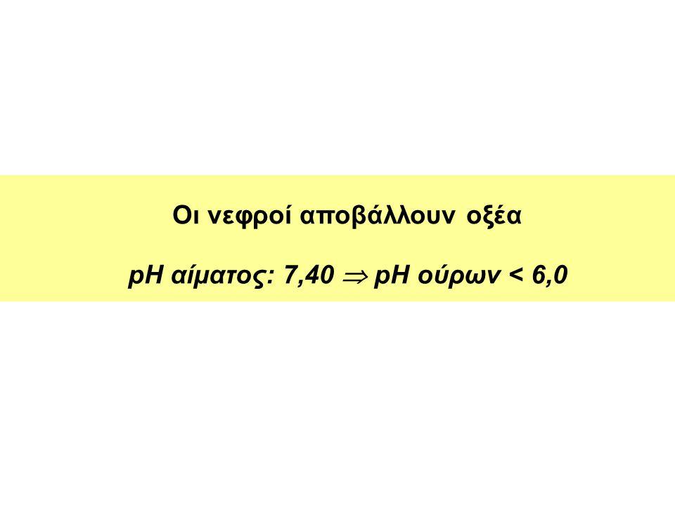 Οι νεφροί αποβάλλουν οξέα pH αίματος: 7,40  pH ούρων < 6,0