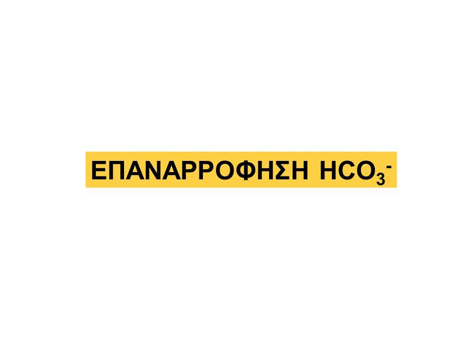 ΕΠΑΝΑΡΡΟΦΗΣΗ HCO 3 -