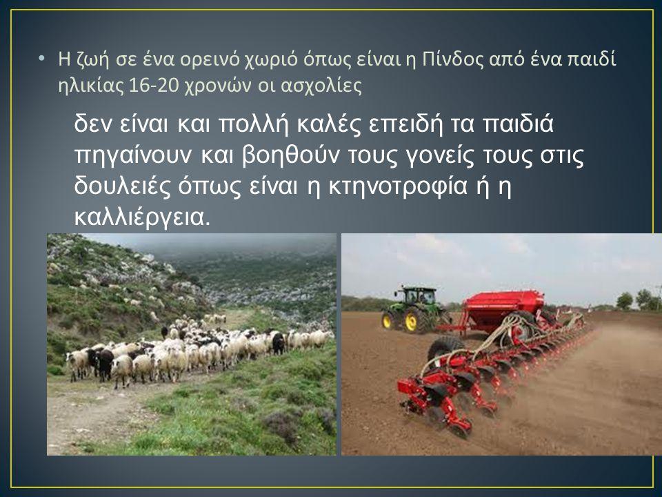 Η ζωή σε ένα ορεινό χωριό όπως είναι η Πίνδος από ένα παιδί ηλικίας 16-20 χρονών οι ασχολίες δεν είναι και πολλή καλές επειδή τα παιδιά πηγαίνουν και βοηθούν τους γονείς τους στις δουλειές όπως είναι η κτηνοτροφία ή η καλλιέργεια.