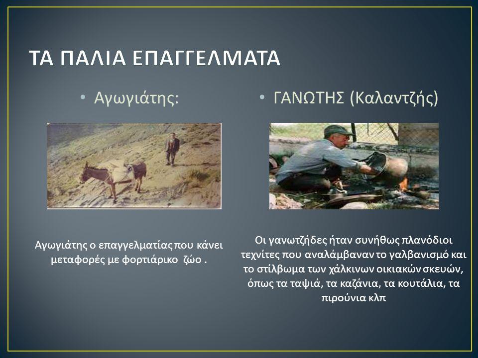 Αγωγιάτης : ΓΑΝΩΤΗΣ ( Καλαντζής ) Αγωγιάτης ο επαγγελματίας που κάνει μεταφορές με φορτιάρικο ζώο.