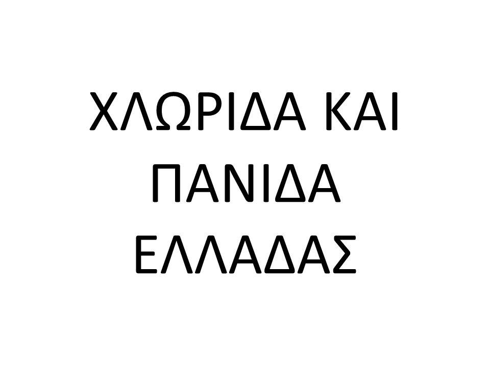 ΧΛΩΡΙΔΑ Η γεωγραφική θέση της Ελλάδας μεταξύ τριών ηπείρων (Ευρώπη, Ασία, Αφρική), το μεσογειακό κλίμα, η ποικιλομορφία των γεωλογικών υποστρωμάτων, οι δαντελωτές ακτογραμμές με τα χιλιάδες νησιά, οι καθαρές θάλασσες και η υψομετρική διαβάθμιση, δημιούργησαν τις συνθήκες ανάπτυξης μιας ποικιλίας οικοσυστημάτων και βιοτόπων μοναδικών στο κόσμο.