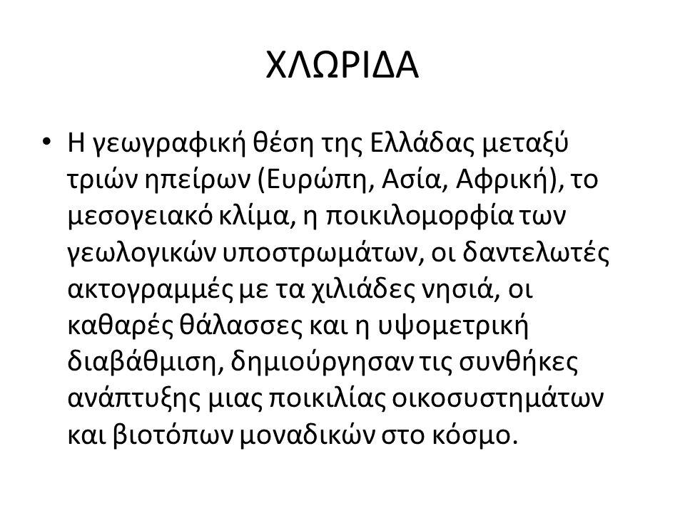ΧΛΩΡΙΔΑ Η γεωγραφική θέση της Ελλάδας μεταξύ τριών ηπείρων (Ευρώπη, Ασία, Αφρική), το μεσογειακό κλίμα, η ποικιλομορφία των γεωλογικών υποστρωμάτων, ο
