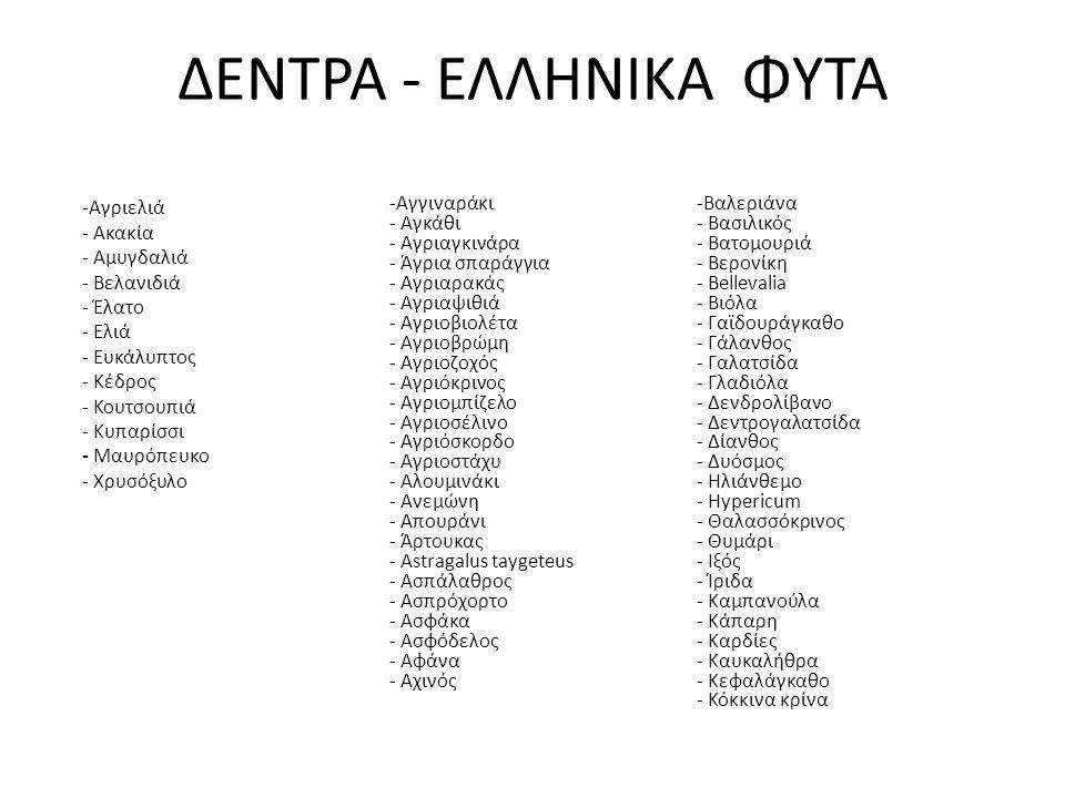 -Κουμαριά - Κουνούκλα - Κρινάκι - Κρίταμο - Κρόκος - Κυκλάμινο - Λεβάντα - Λούπινο - Μανουσάκι - Μαντζουράνα - Μάραθος - Μαργαρίτα - Μελισσόφυλο -Μέντα - Μολόχα - Μυρτιά - Νάρκισσος - Νεραγκούλα - Ξυλόθρουμπος - Ορχιδέες - Origanum Scambrum - Παπαρούνα - Πάππαρος - Περικοκλάδα - Πετρόχορτο - Πικραγκουριά - Πικραλίδα - Πικροδάφνη - Πολυριζούσα - Πτεροκέφαλος - Ρίγανη - Saxifraga - Σελινόχορτο - Σκόλυμος -Σκυλοκρεμμύδα - Σπάκα - Σπάρτα - Σταυραγκάθι - Σχίνος - Τραγοπώγων - Τσάι Ταϋγέτου - Τσουκνίδα - Φασκόμηλο - Φεγγαρόφυλλα - Φιδόχορτο - Φούσκα - Φραγκοσυκιά - Φτέρη - Φουσκούδι - Χαμομήλι - Χελιδονόχορτο - Χρυσάνθεμο - Χωνάκι - Ψευτοσέλινο - Hieracium pannosum - Stipa pulcherrima ΔΕΝΤΡΑ - ΕΛΛΗΝΙΚΑ ΦΥΤΑ