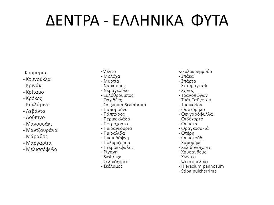 -Κουμαριά - Κουνούκλα - Κρινάκι - Κρίταμο - Κρόκος - Κυκλάμινο - Λεβάντα - Λούπινο - Μανουσάκι - Μαντζουράνα - Μάραθος - Μαργαρίτα - Μελισσόφυλο -Μέντ