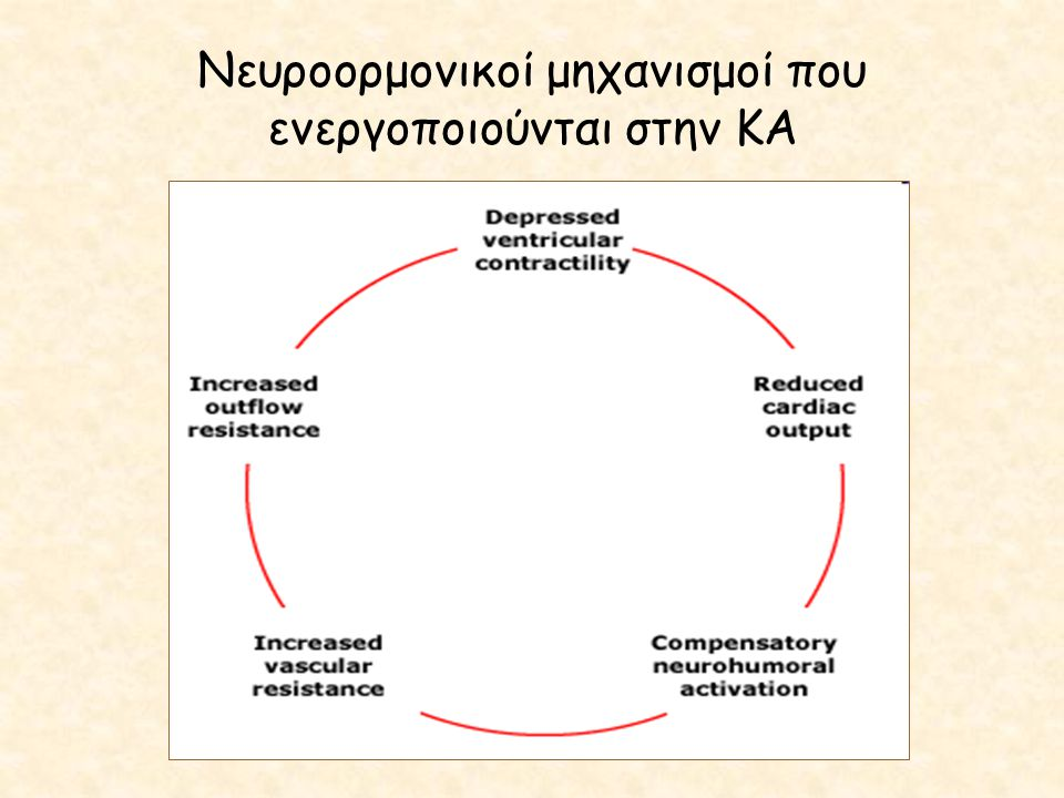 Νευροορμονικοί μηχανισμοί που ενεργοποιούνται στην ΚΑ