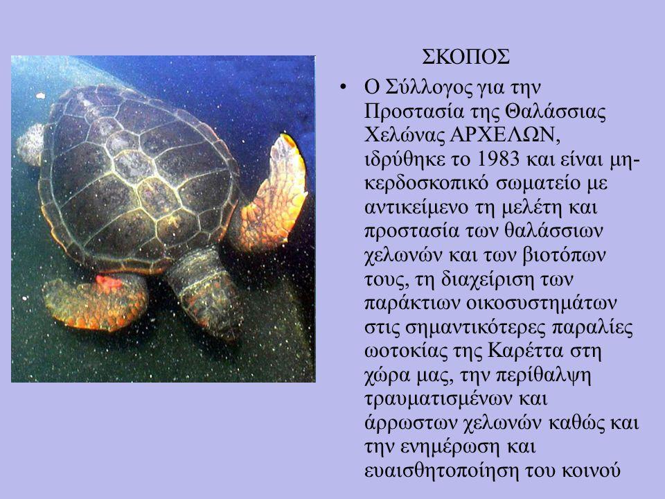 Ο Σύλλογος για την Προστασία της Θαλάσσιας Χελώνας ΑΡΧΕΛΩΝ, ιδρύθηκε το 1983 και είναι μη- κερδοσκοπικό σωματείο με αντικείμενο τη μελέτη και προστασία των θαλάσσιων χελωνών και των βιοτόπων τους, τη διαχείριση των παράκτιων οικοσυστημάτων στις σημαντικότερες παραλίες ωοτοκίας της Καρέττα στη χώρα μας, την περίθαλψη τραυματισμένων και άρρωστων χελωνών καθώς και την ενημέρωση και ευαισθητοποίηση του κοινού ΣΚΟΠΟΣ