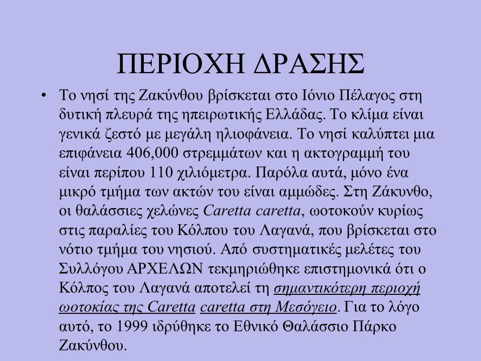ΠΕΡΙΟΧΗ ΔΡΑΣΗΣ Το νησί της Ζακύνθου βρίσκεται στο Ιόνιο Πέλαγος στη δυτική πλευρά της ηπειρωτικής Ελλάδας.