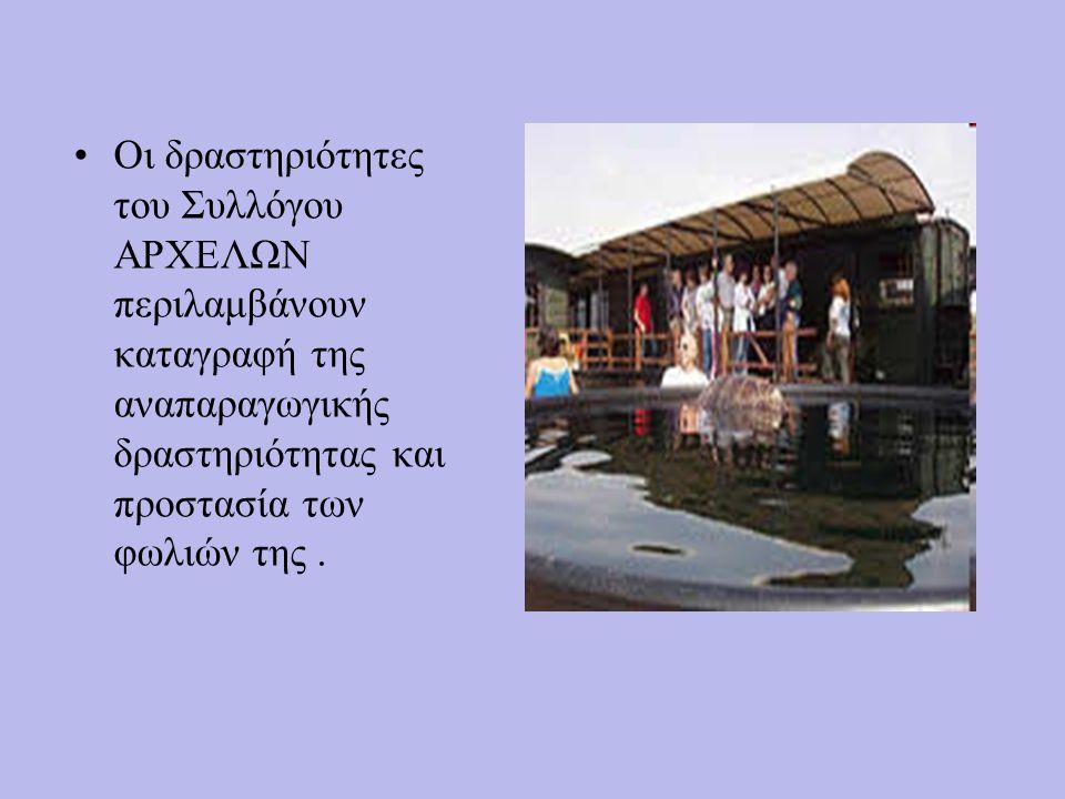 ΠΕΡΙΟΧΗ ΔΡΑΣΗΣ Το νησί της Ζακύνθου βρίσκεται στο Ιόνιο Πέλαγος στη δυτική πλευρά της ηπειρωτικής Ελλάδας. Το κλίμα είναι γενικά ζεστό με μεγάλη ηλιοφ