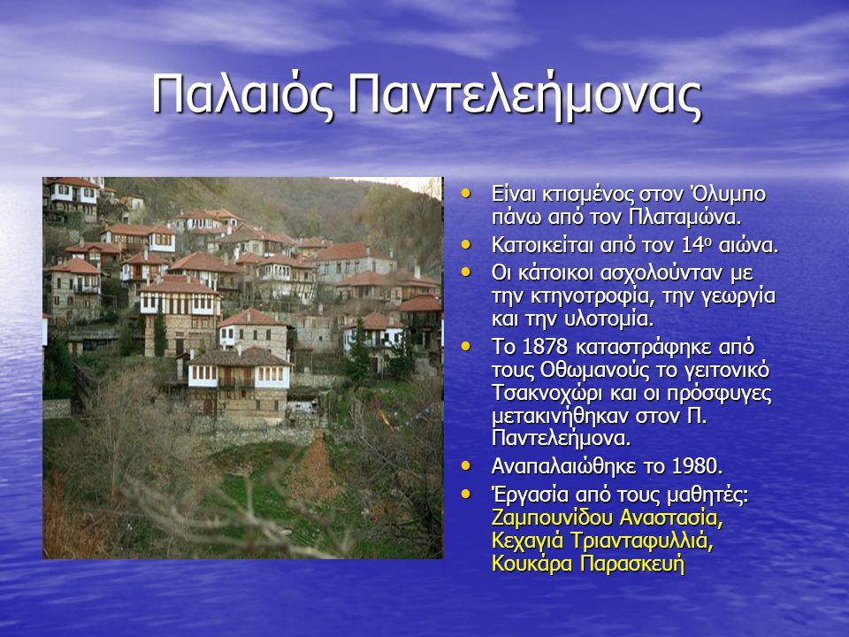 Παλαιός Παντελεήμονας Είναι κτισμένος στον Όλυμπο πάνω από τον Πλαταμώνα. Είναι κτισμένος στον Όλυμπο πάνω από τον Πλαταμώνα. Κατοικείται από τον 14 ο