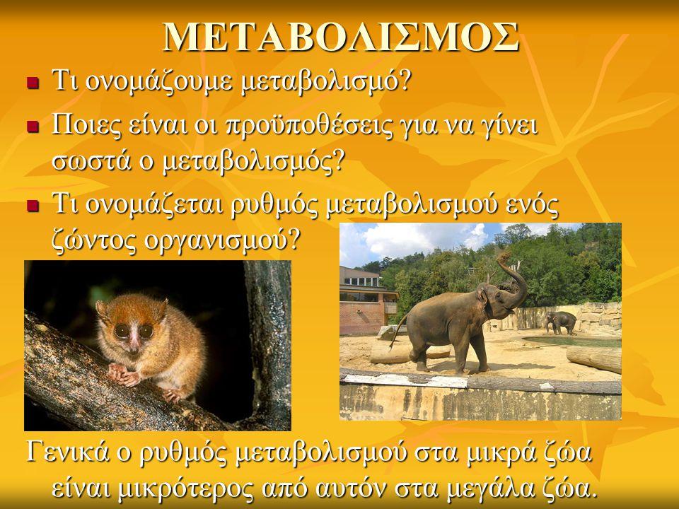 ΡΥΘΜΟΣ ΑΠΟΒΟΛΗΣ ΘΕΡΜΟΤΗΤΑΣ Κάθε ζώο, για να επιβιώσει πρέπει να βρει κάποιον τρόπο να κρατήσει το σώμα του σε θερμοκρασία που να επιτρέπει τη διαδικασία του μεταβολισμού.