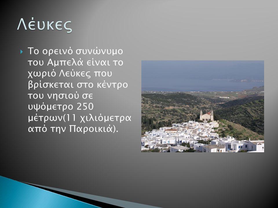  Το ορεινό συνώνυμο του Αμπελά είναι το χωριό Λεύκες που βρίσκεται στο κέντρο του νησιού σε υψόμετρο 250 μέτρων(11 χιλιόμετρα από την Παροικιά).