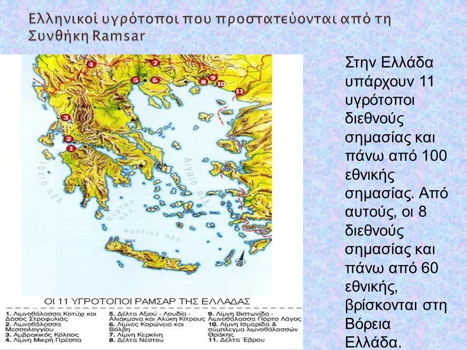 Στην Ελλάδα υπάρχουν 11 υγρότοποι διεθνούς σημασίας και πάνω από 100 εθνικής σημασίας. Από αυτούς, οι 8 διεθνούς σημασίας και πάνω από 60 εθνικής, βρί