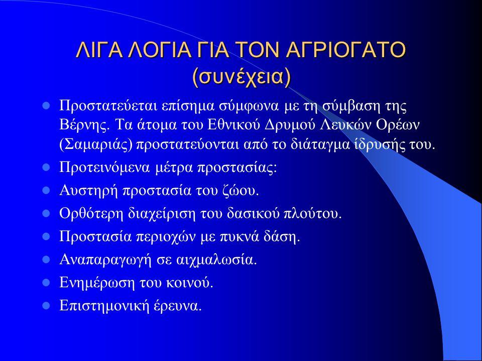 ΛΙΓΑ ΛΟΓΙΑ ΓΙΑ ΤΟΝ ΑΓΡΙΟΓΑΤΟ (συνέχεια) Εξάπλωση: Γνωστή η ύπαρξή του στην Κρήτη( Λευκά Όρη).