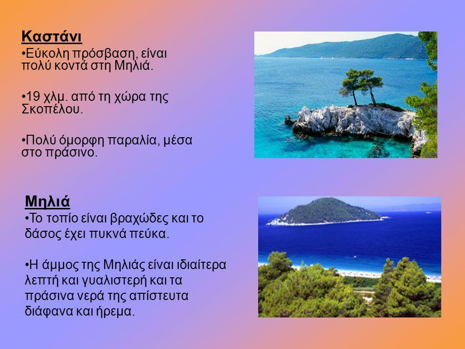 Καστάνι Εύκολη πρόσβαση, είναι πολύ κοντά στη Μηλιά. 19 χλμ. από τη χώρα της Σκοπέλου. Πολύ όμορφη παραλία, μέσα στο πράσινο. Μηλιά Το τοπίο είναι βρα
