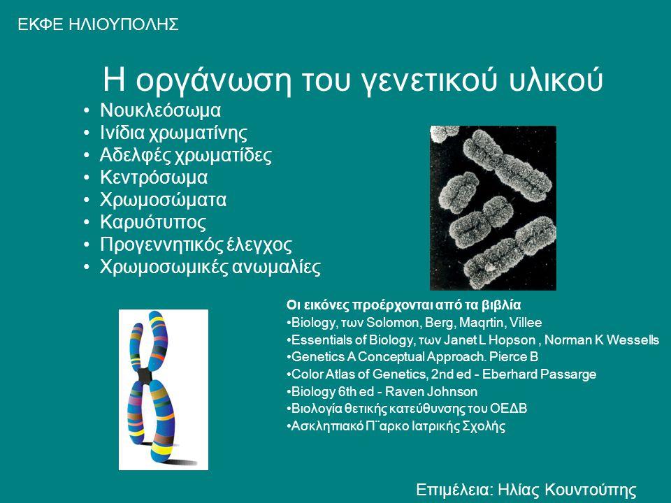 Η οργάνωση του γενετικού υλικού Νουκλεόσωμα Ινίδια χρωματίνης Αδελφές χρωματίδες Κεντρόσωμα Χρωμοσώματα Καρυότυπος Προγεννητικός έλεγχος Χρωμοσωμικές