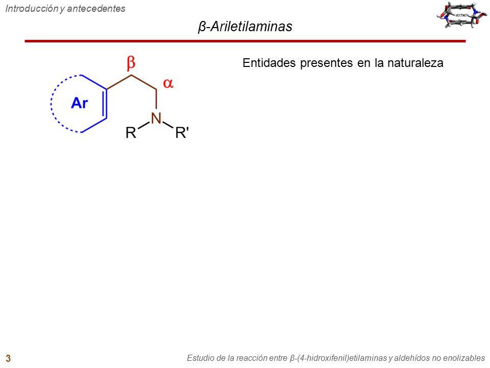 Contenido general 1.Introducción y antecedentes 2.Hipótesis y objetivos 3.Reacción entre tiramina y aldehídos no enolizables –Formación de bases de Schiff –Efecto del hidroxilo fenólico de β-feniletilaminas –Intentos de sustitución electrofílica aromática desde bases de Schiff de tiramina 4.Síntesis de N-benciltiraminas 5.Reacción entre N-benciltiraminas y aldehídos no enolizables –Reacción con aldehídos aromáticos Intento de ciclización Reacción con un fenol altamente activado –Reacción con formaldehído 6.Conclusiones 7.Recomendaciones y perspectivas 8.Producción científica Recomendaciones y perspectivas Estudio de la reacción entre β-(4-hidroxifenil)etilaminas y aldehídos no enolizables