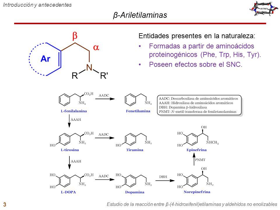 Contenido general 1.Introducción y antecedentes 2.Hipótesis y objetivos 3.Reacción entre tiramina y aldehídos no enolizables –Formación de bases de Schiff –Efecto del hidroxilo fenólico de β-feniletilaminas –Intentos de sustitución electrofílica aromática desde bases de Schiff de tiramina 4.Síntesis de N-benciltiraminas 5.Reacción entre N-benciltiraminas y aldehídos no enolizables –Reacción con aldehídos aromáticos Intento de ciclización Reacción con un fenol altamente activado –Reacción con formaldehído 6.Conclusiones 7.Recomendaciones y perspectivas 8.Producción científica Hipótesis y objetivos Estudio de la reacción entre β-(4-hidroxifenil)etilaminas y aldehídos no enolizables