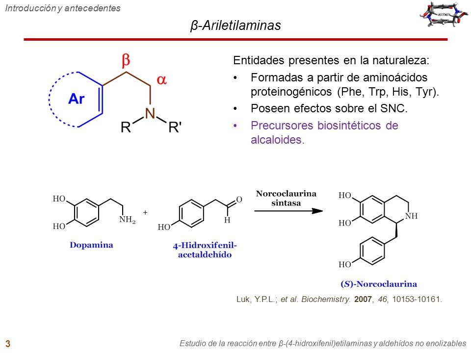 N-Benciltiramina Síntesis de N-benciltiraminas Estudio de la reacción entre β-(4-hidroxifenil)etilaminas y aldehídos no enolizables 27 Sin aislar la imina intermediaria se obtuvo mejor rendimiento global: posibles pérdidas de imina durante su purificación.