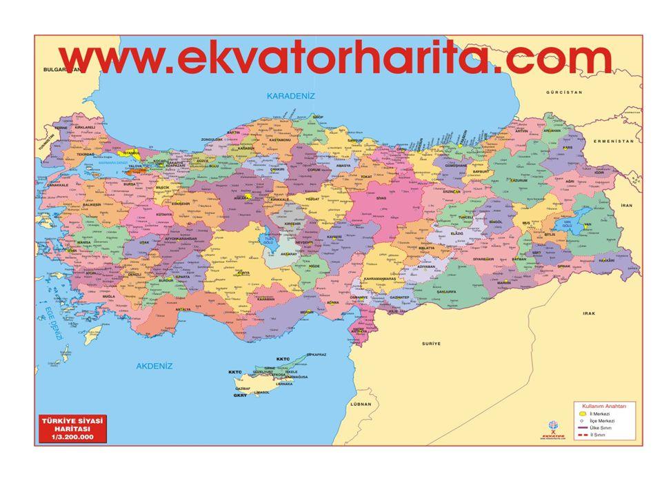 Τα κυριότερα άρθρα είναι: Το κράτος εγγυάται την περιουσία και τη ζωή όλων των πολιτών ανεξαρτήτως θρησκείας και έθνους Όλοι οι πολίτες είναι ίσοι ενώπιον του νόμου Όλοι οι πολίτες μπορούν να γίνουν δημόσιοι υπάλληλοι και μπορούν να επωφεληθούν από την οθωμανική δημόσια εκπαίδευση.