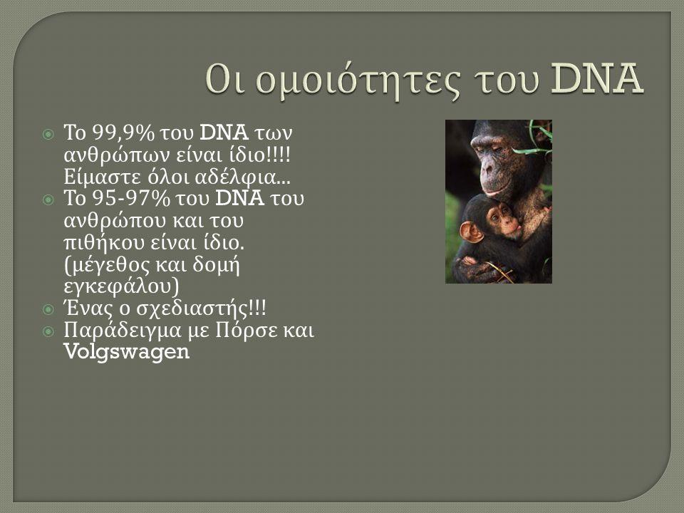  Το 99,9% του DNA των ανθρώπων είναι ίδιο !!!. Είμαστε όλοι αδέλφια...