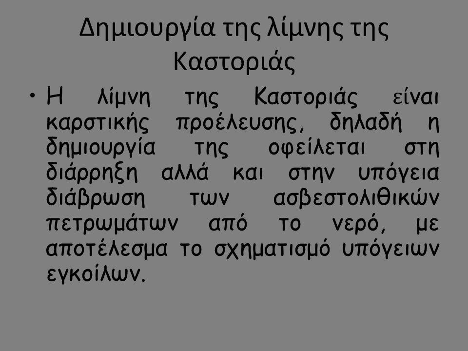 Δημιουργία της λίμνης της Καστοριάς Η λίμνη της Καστοριάς εί ναι καρστικής προέλευσης, δηλαδή η δημιουργία της οφείλεται στη διάρρηξη αλλά και στην υπ