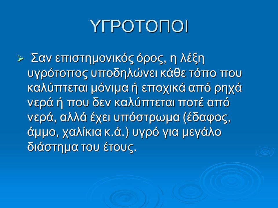 Οι πολύ γενικές κατηγορίες που συνηθίζεται να κατατάσσονται οι υγρότοποι στην Ελλάδα είναι:  ∆έλτα ποταµών  Εκβολές ποταµών  Έλη  Λίµνες  Λιμνοθάλασσες  Πηγές  Αλυκές  Παρόχθιες περιοχές  Ποταµοί  Τεχνητές λίµνες και ταμιευτήρες νερού