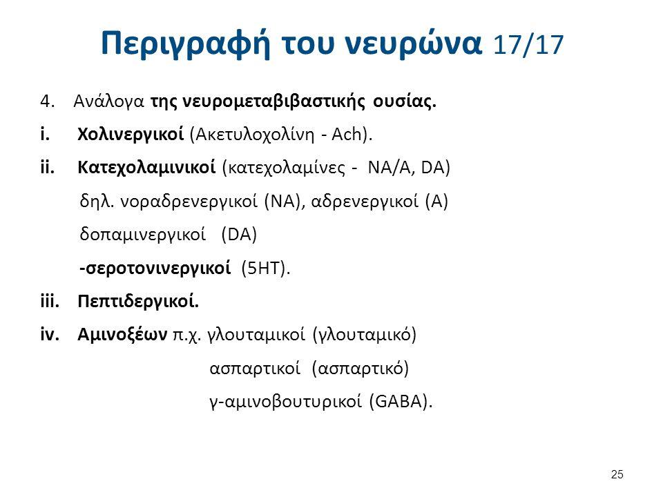 Περιγραφή του νευρώνα 17/17 4.Ανάλογα της νευρομεταβιβαστικής ουσίας. i.Χολινεργικοί (Ακετυλοχολίνη - Ach). ii.Κατεχολαμινικοί (κατεχολαμίνες - NA/A,