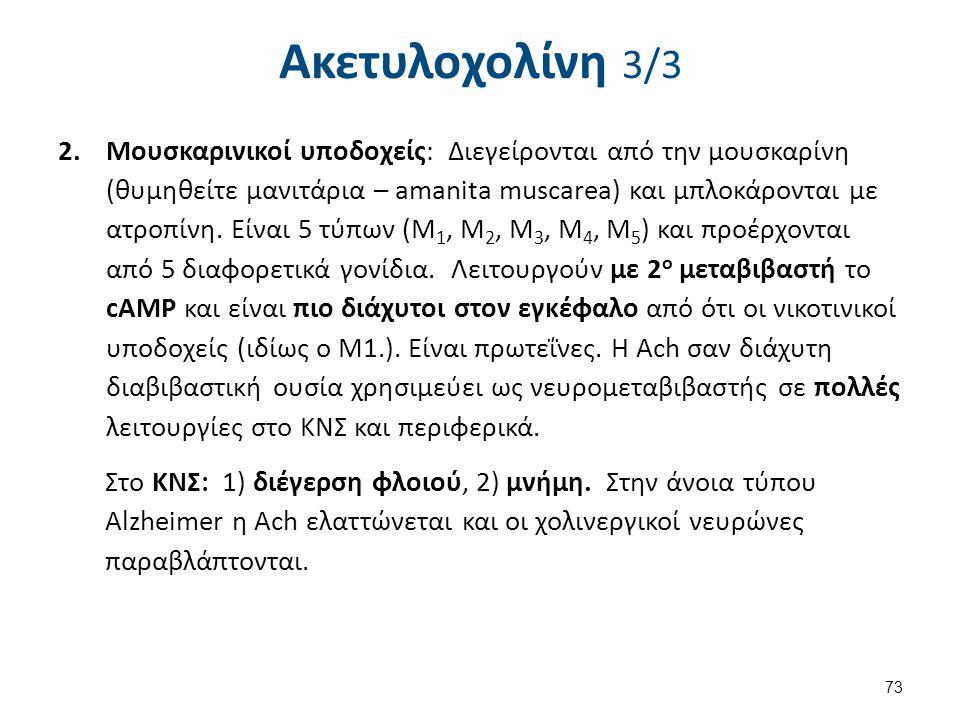 Ακετυλοχολίνη 3/3 2.Μουσκαρινικοί υποδοχείς: Διεγείρονται από την μουσκαρίνη (θυμηθείτε μανιτάρια – amanita muscarea) και μπλοκάρονται με ατροπίνη. Εί
