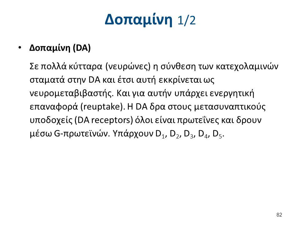 Δοπαμίνη 1/2 Δοπαμίνη (DA) Σε πολλά κύτταρα (νευρώνες) η σύνθεση των κατεχολαμινών σταματά στην DA και έτσι αυτή εκκρίνεται ως νευρομεταβιβαστής. Και