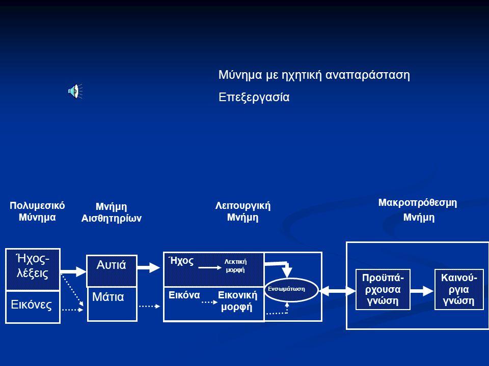 Πολυμεσικό Μύνημα Μνήμη Αισθητηρίων Λειτουργική Μνήμη Μακροπρόθεσμη Μνήμη Ήχος- λέξεις Αυτιά Ήχος Λεκτική μορφή Εικόνα Εικονική μορφή Ενσωμάτωση Προϋπ