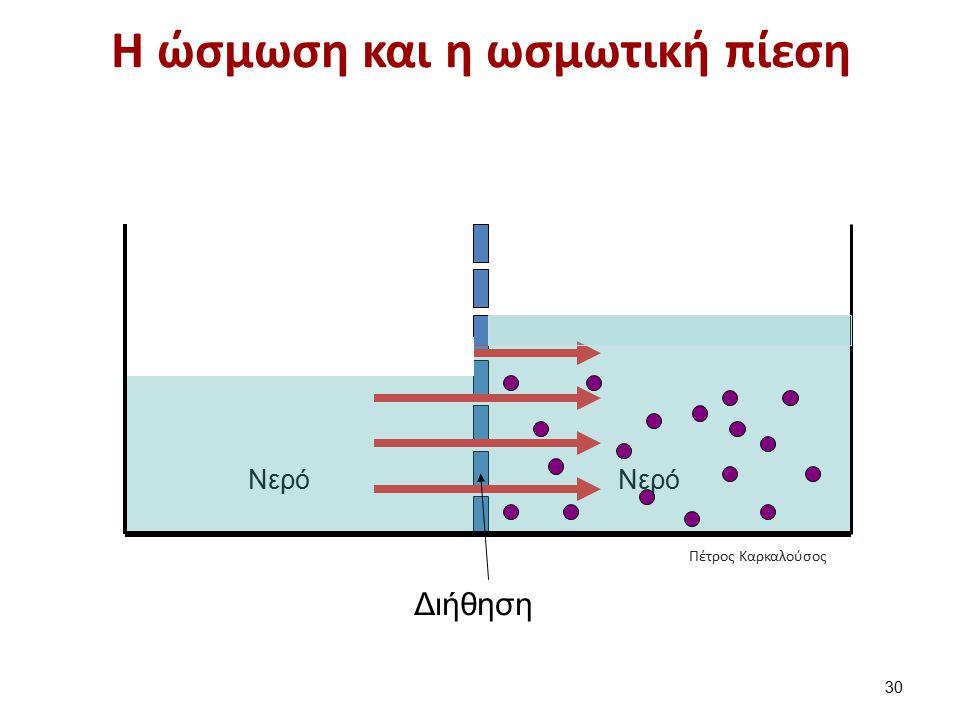 Νερό Διήθηση 30 Η ώσμωση και η ωσμωτική πίεση Πέτρος Καρκαλούσος