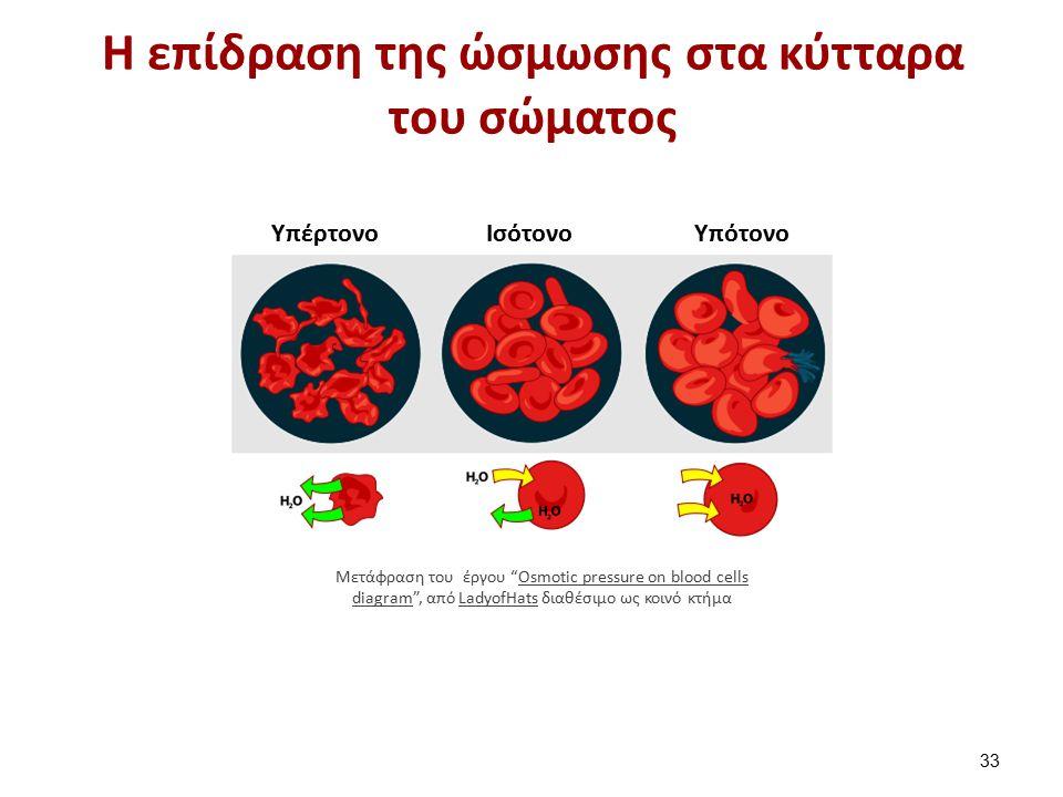 """Η επίδραση της ώσμωσης στα κύτταρα του σώματος 33 Μετάφραση του έργου """"Osmotic pressure on blood cells diagram"""", από LadyofHats διαθέσιμο ως κοινό κτή"""