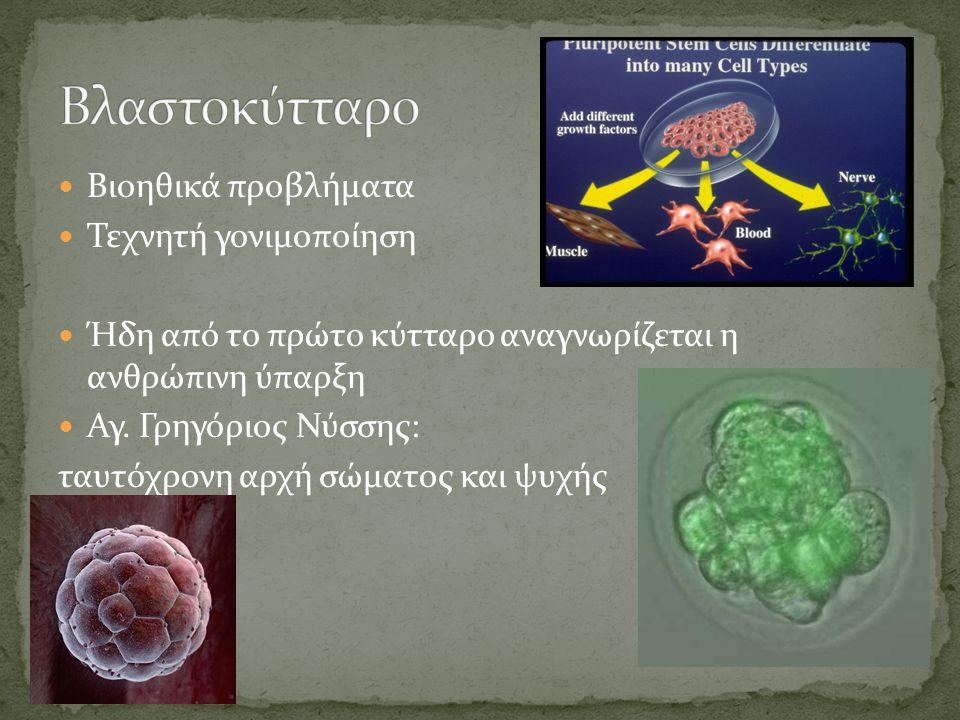 Βιοηθικά προβλήματα Τεχνητή γονιμοποίηση Ήδη από το πρώτο κύτταρο αναγνωρίζεται η ανθρώπινη ύπαρξη Αγ.