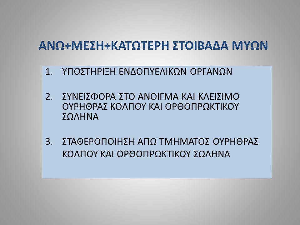 ΑΝΩ+ΜΕΣΗ+ΚΑΤΩΤΕΡΗ ΣΤΟΙΒΑΔΑ ΜΥΩΝ 1.ΥΠΟΣΤΗΡΙΞΗ ΕΝΔΟΠΥΕΛΙΚΩΝ ΟΡΓΑΝΩΝ 2.ΣΥΝΕΙΣΦΟΡΑ ΣΤΟ ΑΝΟΙΓΜΑ ΚΑΙ ΚΛΕΙΣΙΜΟ ΟΥΡΗΘΡΑΣ ΚΟΛΠΟΥ ΚΑΙ ΟΡΘΟΠΡΩΚΤΙΚΟΥ ΣΩΛΗΝΑ 3.ΣΤΑΘΕΡΟΠΟΙΗΣΗ ΑΠΩ ΤΜΗΜΑΤΟΣ ΟΥΡΗΘΡΑΣ ΚΟΛΠΟΥ ΚΑΙ ΟΡΘΟΠΡΩΚΤΙΚΟΥ ΣΩΛΗΝΑ
