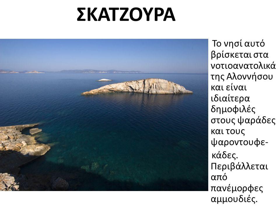ΣΚΑΤΖΟΥΡΑ Το νησί αυτό βρίσκεται στα νοτιοανατολικά της Αλοννήσου και είναι ιδιαίτερα δημοφιλές στους ψαράδες και τους ψαροντουφε- κάδες.