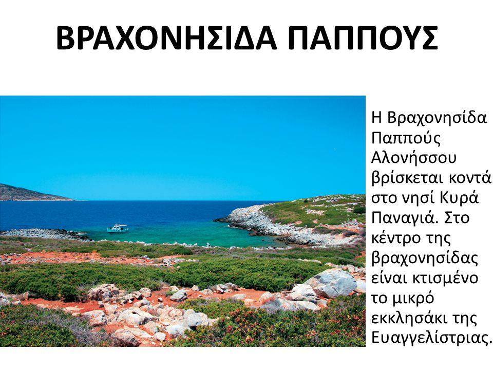 ΒΡΑΧΟΝΗΣΙΔΑ ΠΑΠΠΟΥΣ Η Βραχονησίδα Παππούς Αλονήσσου βρίσκεται κοντά στο νησί Κυρά Παναγιά.