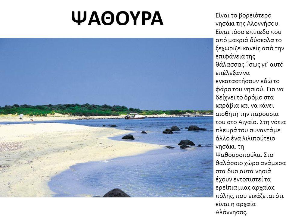 ΨΑΘΟΥΡΑ Είναι το βορειότερο νησάκι της Αλοννήσου.