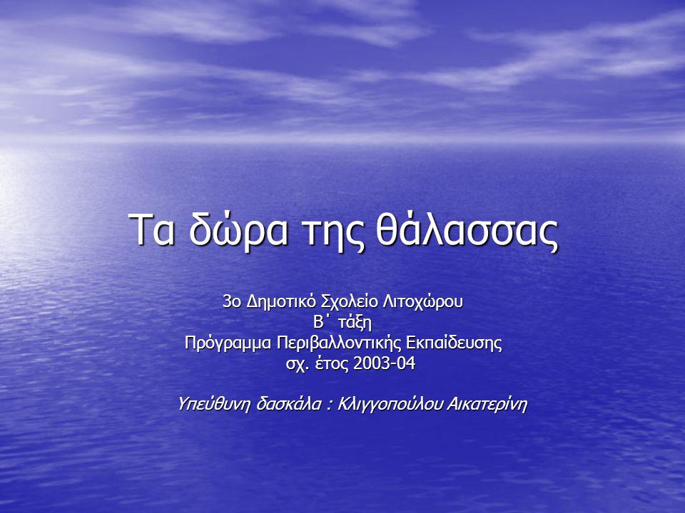 Τα δώρα της θάλασσας 3ο Δημοτικό Σχολείο Λιτοχώρου Β΄ τάξη Πρόγραμμα Περιβαλλοντικής Εκπαίδευσης σχ. έτος 2003-04 σχ. έτος 2003-04 Υπεύθυνη δασκάλα :
