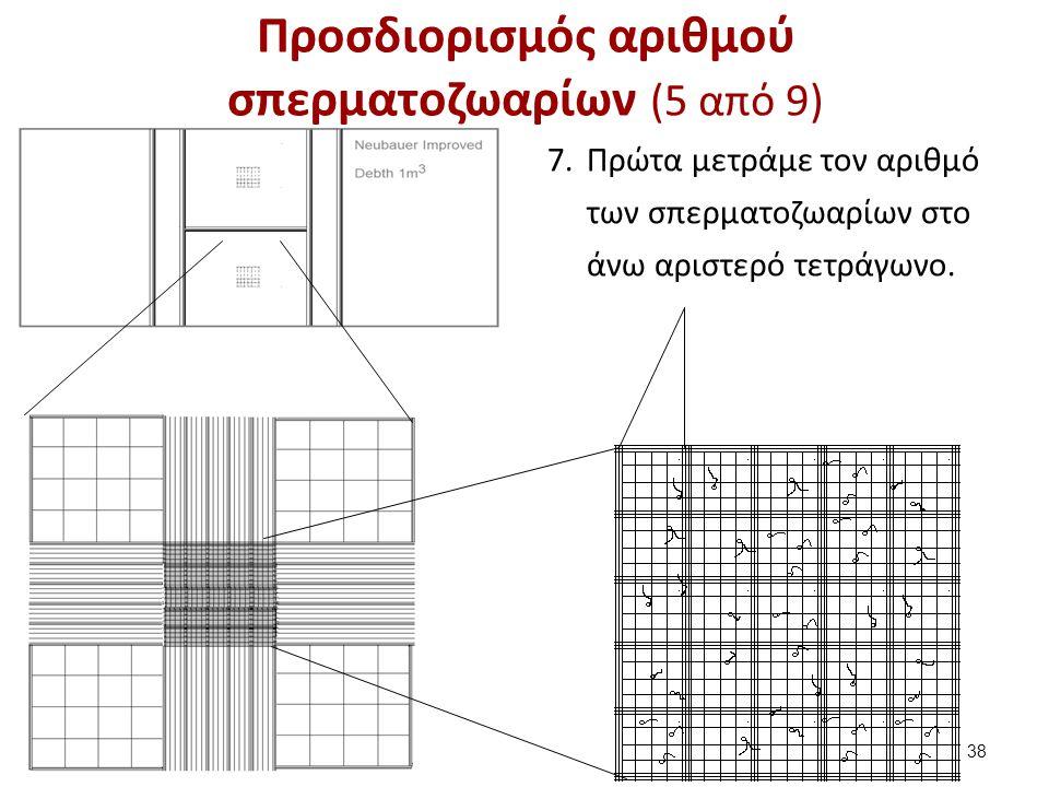 7.Πρώτα μετράμε τον αριθμό των σπερματοζωαρίων στο άνω αριστερό τετράγωνο. 38 Προσδιορισμός αριθμού σπερματοζωαρίων (5 από 9)