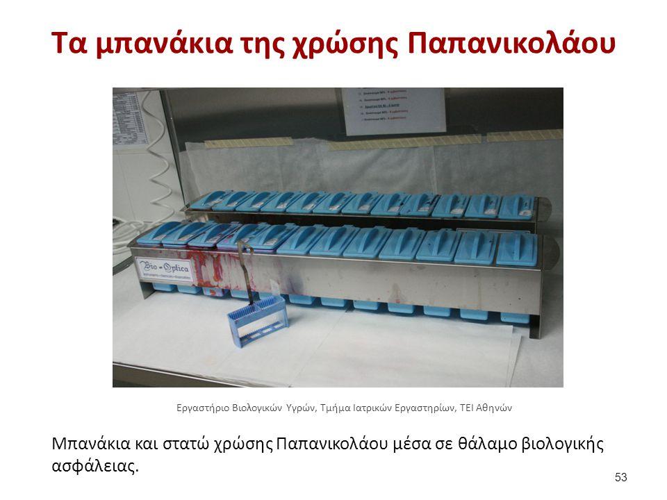 Τα μπανάκια της χρώσης Παπανικολάου Μπανάκια και στατώ χρώσης Παπανικολάου μέσα σε θάλαμο βιολογικής ασφάλειας. 53 Εργαστήριο Βιολογικών Υγρών, Τμήμα