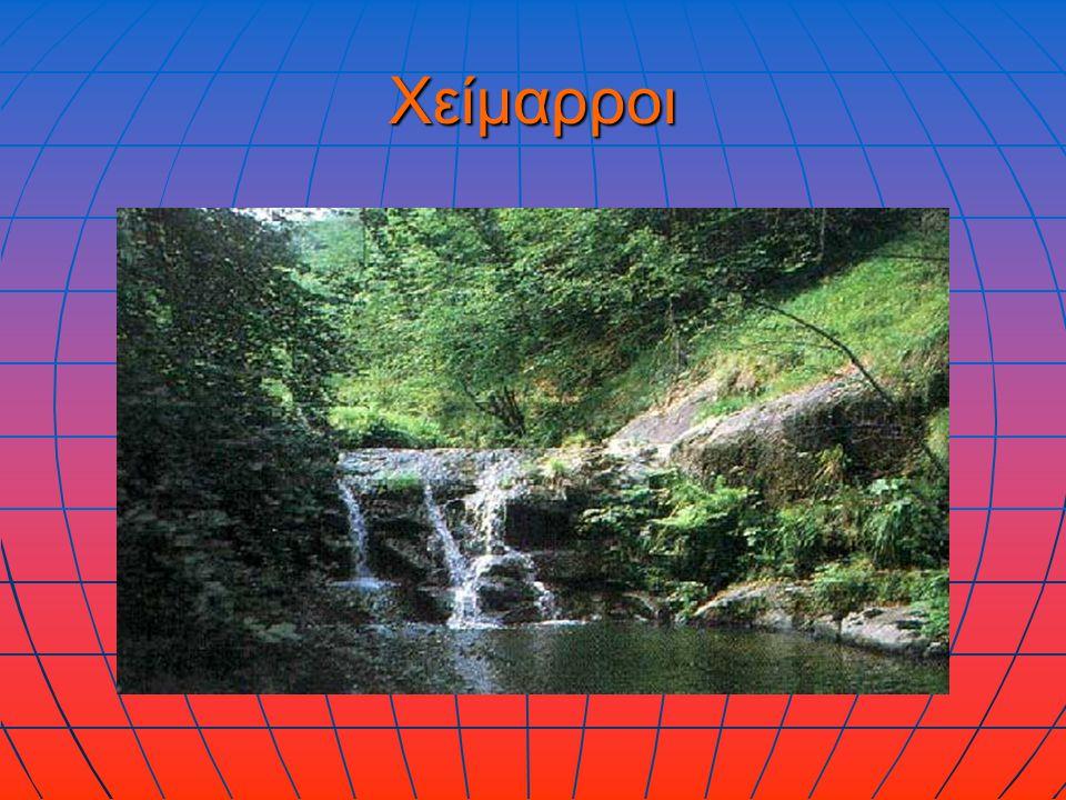 Τι ονομάζεται χείμαρρος και πώς σχηματίζεται; Χείμαρρος ονομάζεται ένα ποτάμι που είναι στεγνό κατά τους καλοκαιρινούς μήνες.